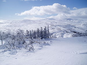 Storlien - Panorama from the top of the ski area