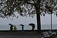 Suisse - Vevey - jour de pluie - aout 2014 - 01.jpg