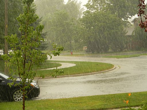 Summer Storm in Waterdown1