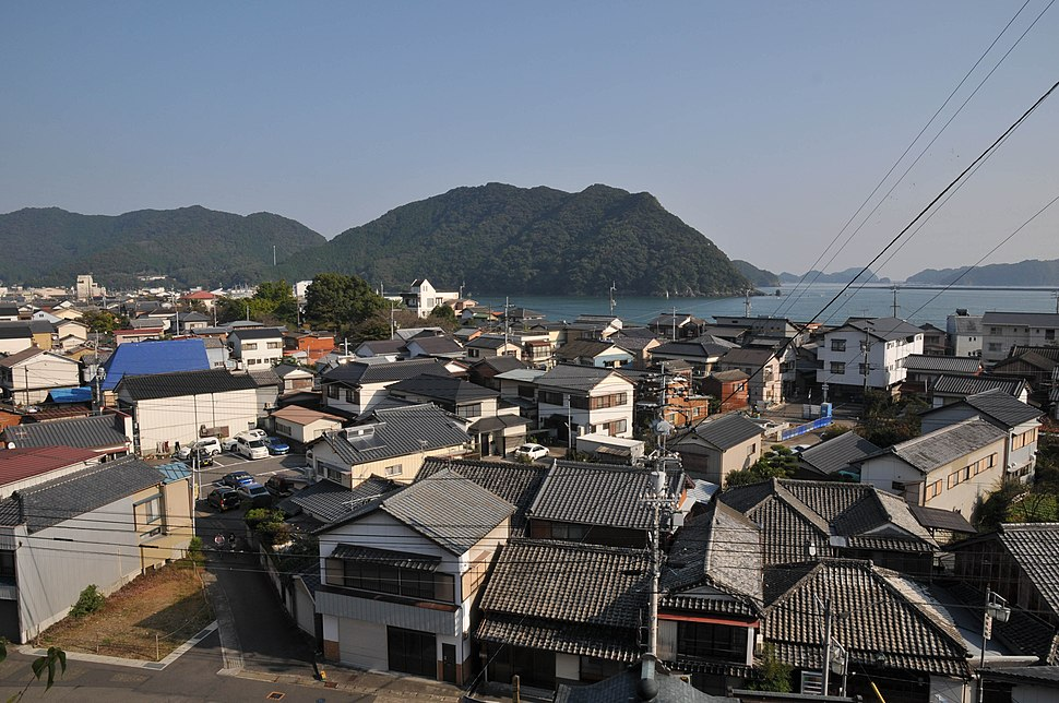 Susaki city view