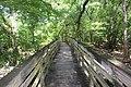 Suwannee River State Park on footbridge over Lime Sink Run.jpg