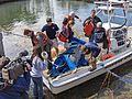 TV film crew at manate rescue operation.jpg