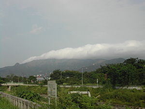 Tai Mo Shan - Tai Mo Shan capped in mist