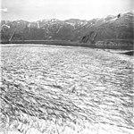 Taku Glacier, terminus of tidewater glacier in the background, September 1, 1977 (GLACIERS 6256).jpg