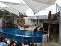 Taronga Zoo (6181960633).jpg
