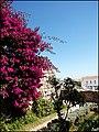 Tavira (Portugal) (33385232305).jpg