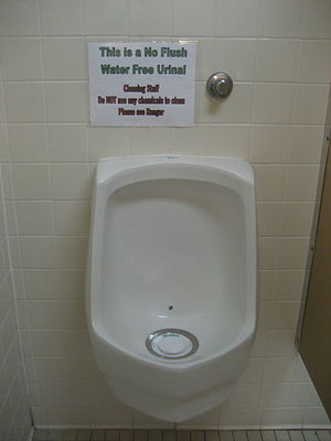 No flush urinal. Photographed in Tampa, Florida.