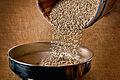 Terra Nera coffee beans.jpg