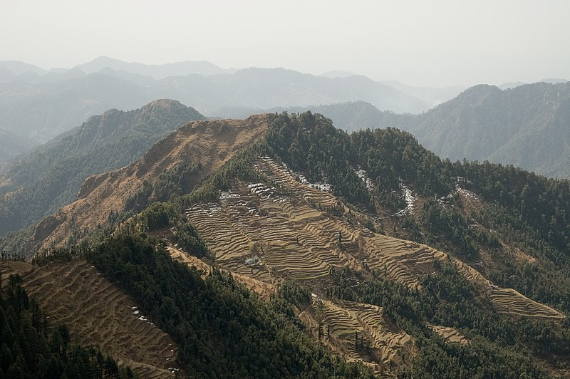 File:Terrace fields near Dhanaulti, Uttarakhand.jpg