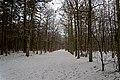 Texel - Eksterlaan - Winterview NNW.jpg