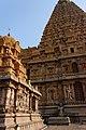 Thanjavur, Tamil Nadu, India (8199064053).jpg