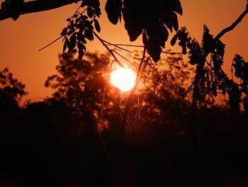 The Dawn in a village.jpg