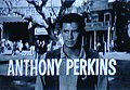 The Tin Star Anthony Perkins 2.jpg