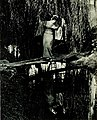 The Willow Tree (1920) - Dana 2.jpg