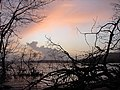 The colors of sunset.. 3 - Flickr - Indyblue.jpg