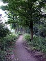 The path to Lady Spencer's Wood - geograph.org.uk - 491989.jpg