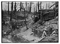 The wood called Des Fermes in the Somme LOC 16556109004.jpg