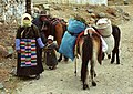 Tibet,Tsurphu.jpg