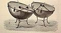 Timbales de orquesta (1882).jpg