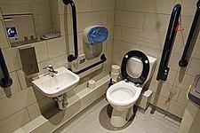 Toilet in England.jpg