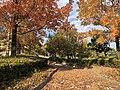 Tokadai Chuo Park03.jpg