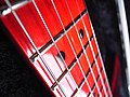 Tokai Talbo fingerboard (red).jpg