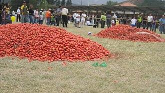 Sutamarchán - Image: Tomatina Colombia