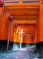 Torii passage - Fushimi Inari.jpg