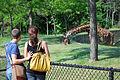 Toronto Zoo (4660116193).jpg