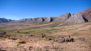 Bolivian montane dry forests ecoregion in Bolivia