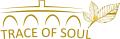 Trace of Soul Logo-en.png
