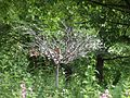 Tree of Tranquility, Auchinlea Park, Glasgow.jpg