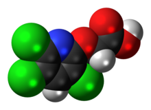 Space-filling model of the triclopyr molecule