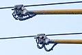 Trolley poles in Sofia, Bulgaria 2012 PD 1.jpg