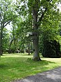Trzęsacz park, XVIII nr 658124 (1).JPG