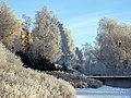 Tuira Oulu 20070121.jpg
