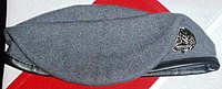 USAF Special Operations Weather Beret.jpg