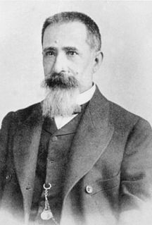 Ulisse Dini Italian mathematician and politician