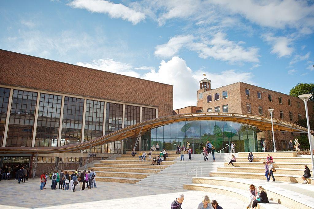 Exeter University St Luke S Cat Facebook Page