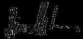 Signature of Heinz-Christian Strache