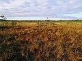 Valkmusa national park 03.jpg