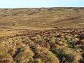 Valley of Hirddu Fawr - geograph.org.uk - 1238677.jpg