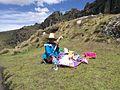 Venedora a Cumbe Mayo02.jpg