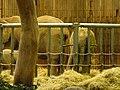 Verleihung der EGHN-Plakette an den Zoo Wuppertal 102.jpg