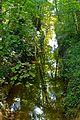 Versoix - panoramio (17).jpg