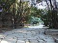 Via Sacra Forum Romanum 2007 YF 0021.JPG