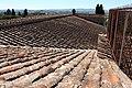 Villa il pozzino, vista dalla villa di castello, edifici da lavoro 02.JPG