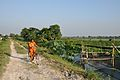 Village Girl - Bidhannagar 7801.JPG