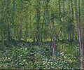 Vincent van Gogh - Trees and undergrowth - Google Art Project.jpg