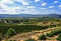 Vinyes del Penedès, Torrelles de Foix.jpg